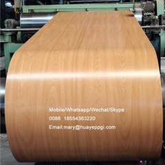 China manufacturer color steel coils ppgi ppgl for sale