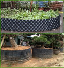 plant air pot