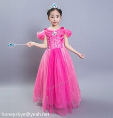 Elsa Frozen Dress For Gi