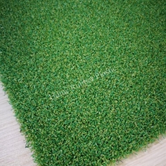 Golf Turf for Putting Greens