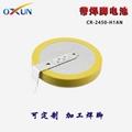 现货供应CR2450纽扣电池 电子标签电池 2