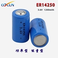 锂亚电池 ER14250电池 水表电表专用电池 3