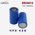 厂家直销 ER34615锂亚电