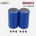 厂家直销 ER34615锂亚电池 传感器 报警器专用电池 2