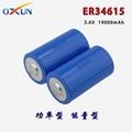 厂家直销 ER34615锂亚电池 传感器 报警器专用电池 5