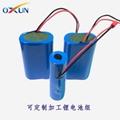厂家定制18650锂电池组 7