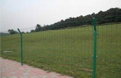 鐵絲網圍欄-高防護DH216型雙邊絲護欄網