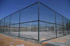 深圳運動場專用DH214型鐵絲網圍欄
