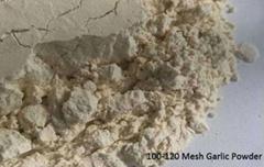 Garlic Powder Wholesale Price