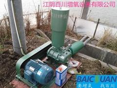 污水處理專用曝氣增氧高壓羅茨風機