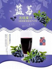威瑟亚美蓝莓浓缩果汁 蓝莓原浆