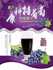 威瑟亞美康科特葡萄濃縮果汁 康科特葡萄原漿