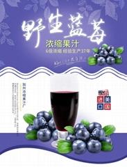 威瑟亚美野生蓝莓浓缩果汁 野生蓝莓原浆