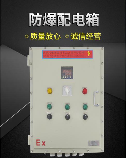 防爆配電箱生產直銷廠家定製 1