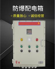 防爆配電箱生產直銷廠家定製