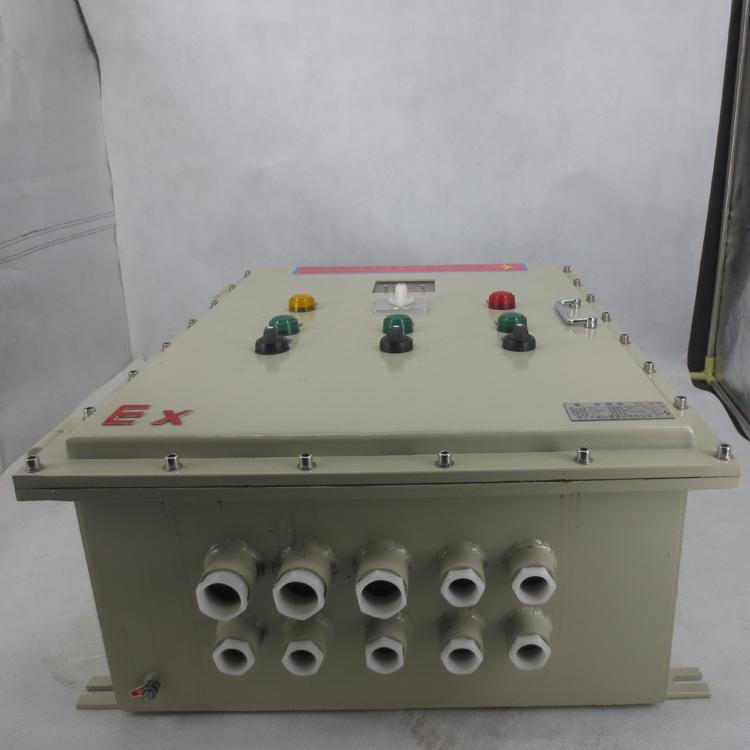 防爆配電箱生產直銷廠家定製 2