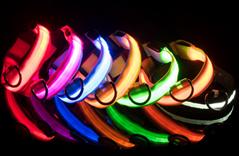 Pet Collars dog LED Collar light