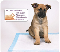 Nonwovens for Pet Pads
