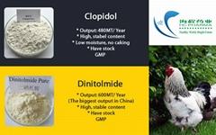 High Purity Dinitolmide Powder CAS: 148-01-6 Veterinary API Medicine Powder Dini