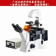 供应广州粤显 XDY-2 倒置荧光显微镜 400x细胞组织微生物显微镜
