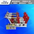 上海飞控实业FKN12-24D