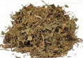 Centella asiaticaextract-Asiaticoside&Asiatic Acid 5
