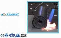 Torched-on Bitumen Waterproof Membrane Made in China