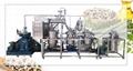 Moringa Oill Extraction Machine