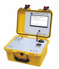 便攜式天然氣分析儀