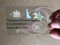 Delaware  ID overlay DE state hologram 1