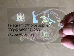Delaware  ID overlay DE state hologram