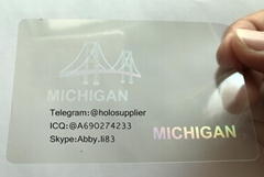 New Michigan ID state overlay MI overlay Michigan hologram