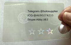 Texas state id overlay hologram
