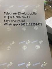 Tennessee TN ID laminate sheet hologram