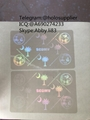 South Carolina SC ID DL hologram overlay