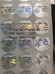 NEW Georgia ID hologram New GA back Hologram sticker