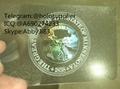 Minnesota MN ID hologram MN state