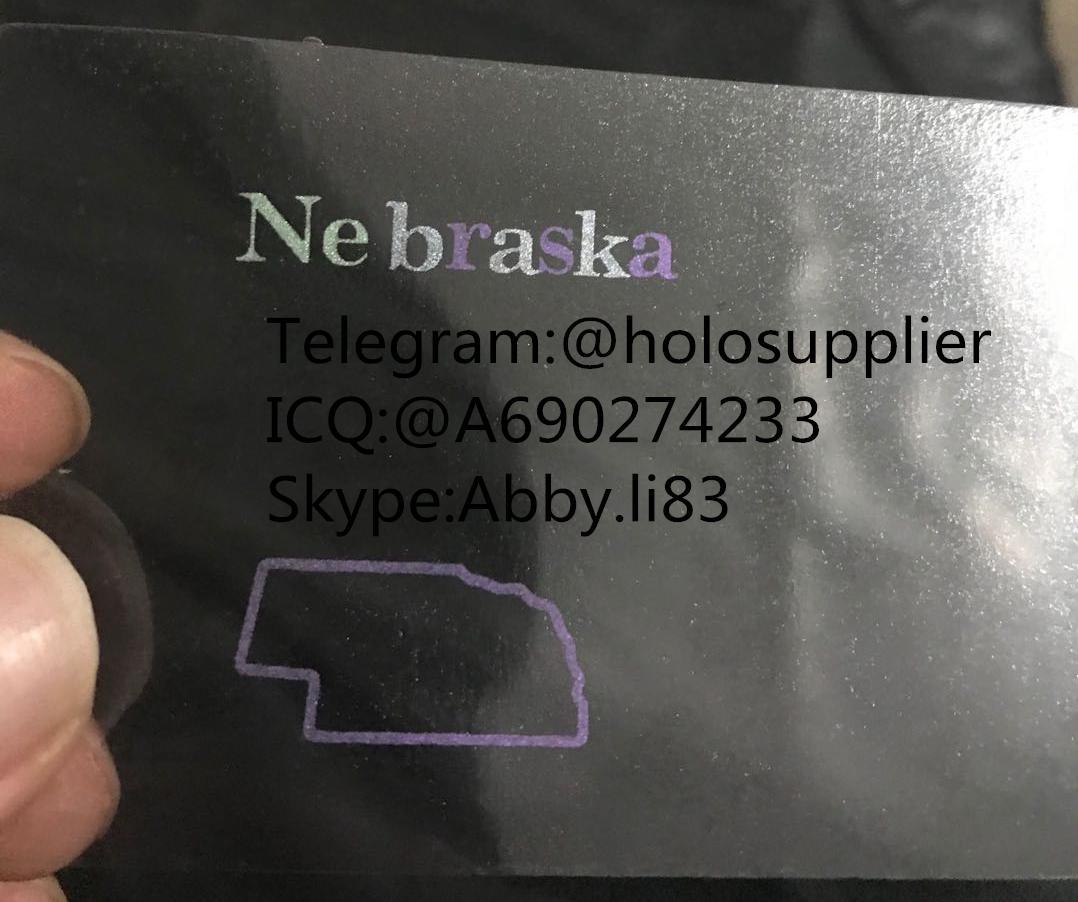 Nebraska NE ID hologram NE state overlay 1