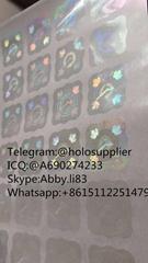 Canada PR card hologram