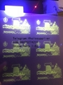 Massachusetts MMA laminate sheet A UV sheet