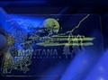 Montana ID hologram MT state overlay