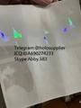 NEW idaho id overlay  ID state hologram
