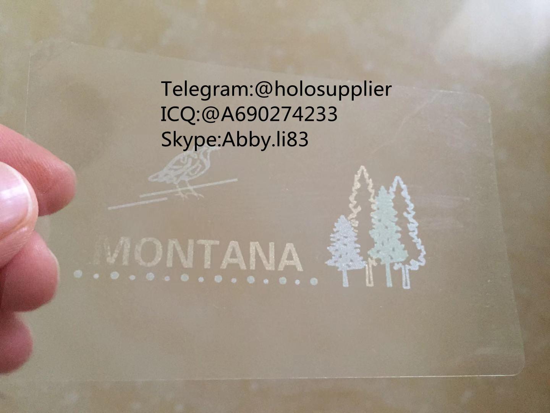 Montana ID hologram MT state overlay 4