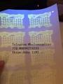 New Pennsy  ania ID hologram