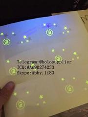 Missouri with UV ID hologram sticker MO id overlay