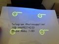 Georgia ID  hologram overlay sticker GA