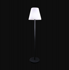 LED Floor Standing lamp
