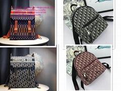 dior backpacks dior clutch dior handbags dior purse DIOR Oblique Saddle Bag 30 M