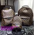 LV handbags LV bags LV boite chapeau souple LV neonoe LV riverside speedy bandou