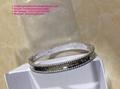 Cartier Bracelet Cartier Stainless Bracelet Cartier Wristband Bangle earrings 16